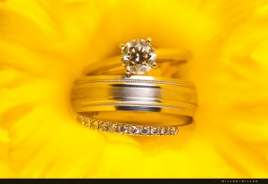 wedding-bands-in-yellow-daffodil